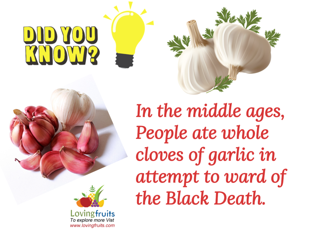 garlic facts