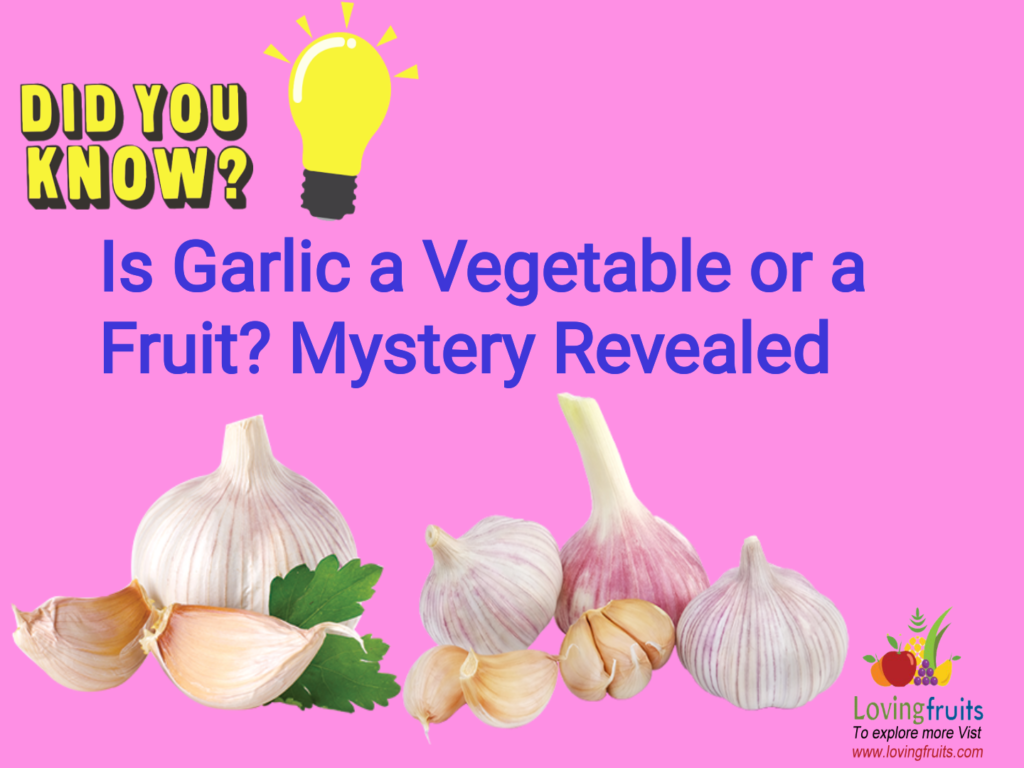 is garlic a vegetable or fruit
